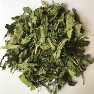 hojas de cáñamo
